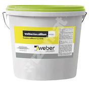 Weber.ton silikon 25kg