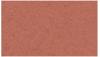 Betonová zámková dlažba CS-BETON KOST tl.6 cm červená 20x165 cm - 3/3